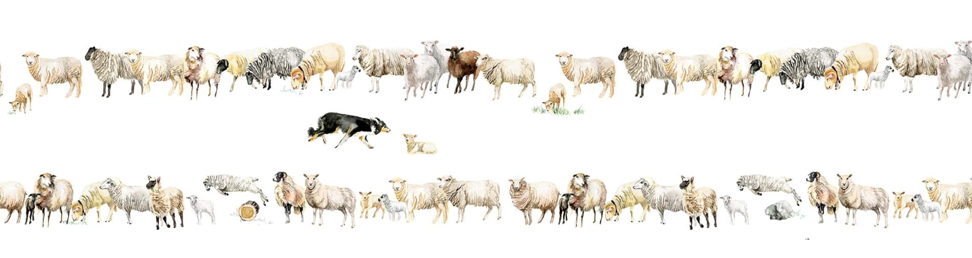 Christian Fischbacher - Counting Sheep